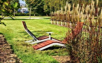 Jak przygotować ogród nazimę?